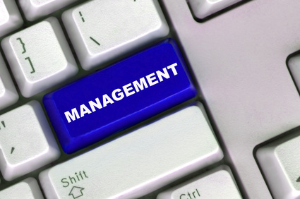 management consulting capabilities
